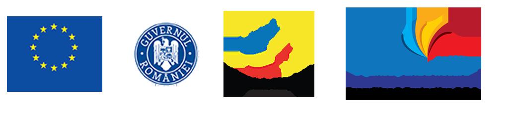 Ocuparea tinerilor NEETS din județul Iași